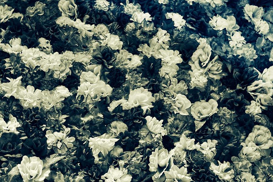 Flowers by Osvaldo Hamer