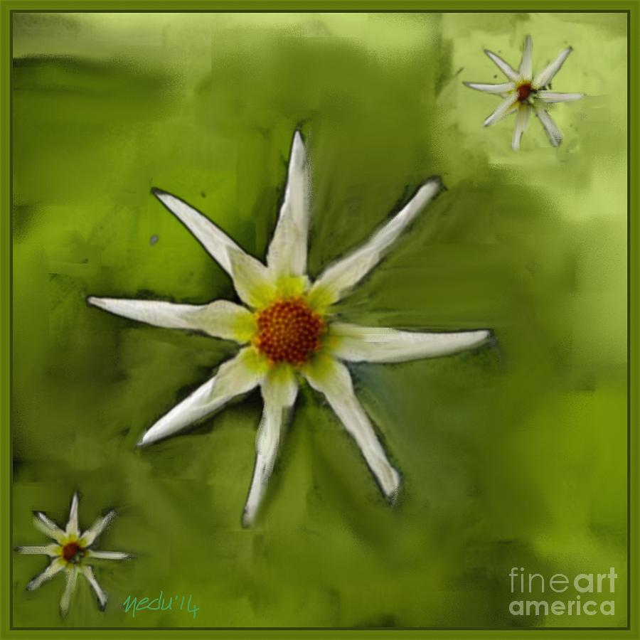Fine Art Painting - Flowers White by Nedunseralathan R