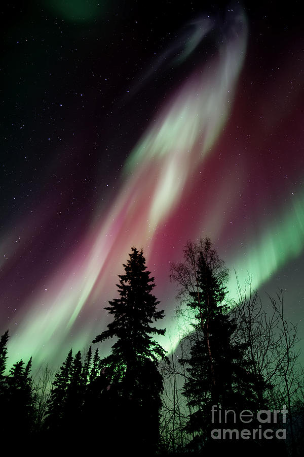 Northern Light Photograph - Flowing Colours by Priska Wettstein