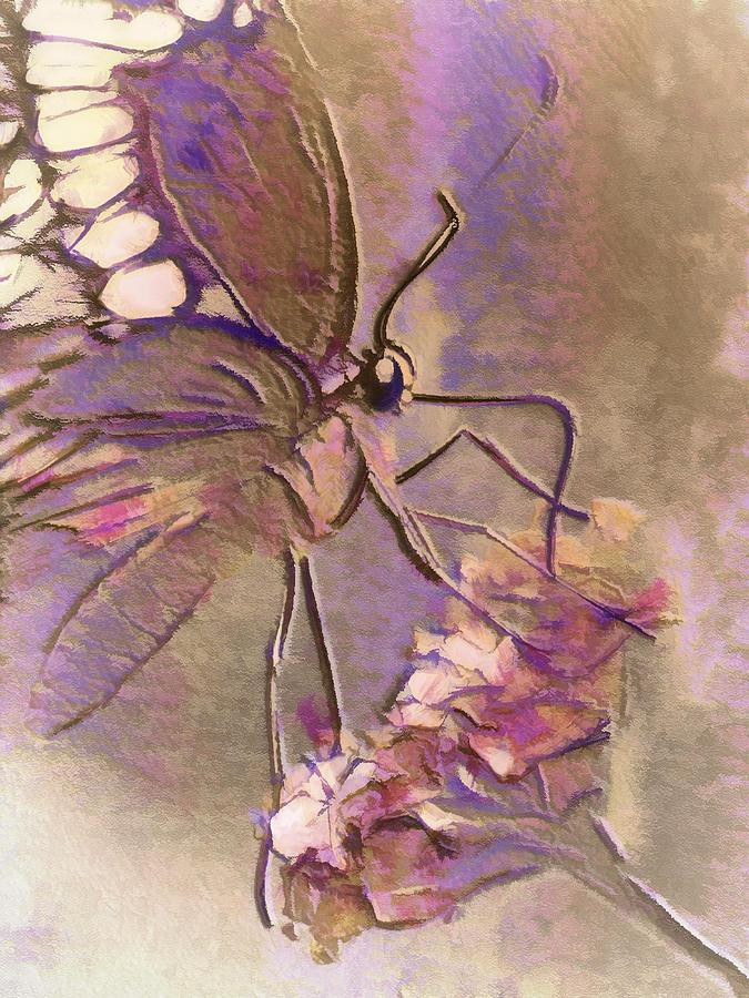 Digital Painting Digital Art - Fluorescent Butterfly by Jill Balsam