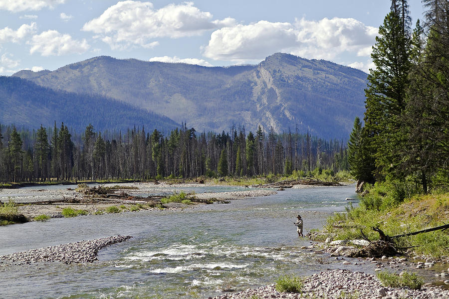Bob Marshall Wilderness Photograph - Fly Fishing On The South Fork Of The Flathead River by Merle Ann Loman