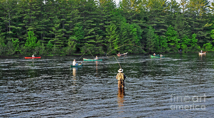 Fly fishing west penobscot river maine photograph by glenn for Trout fishing spots near me
