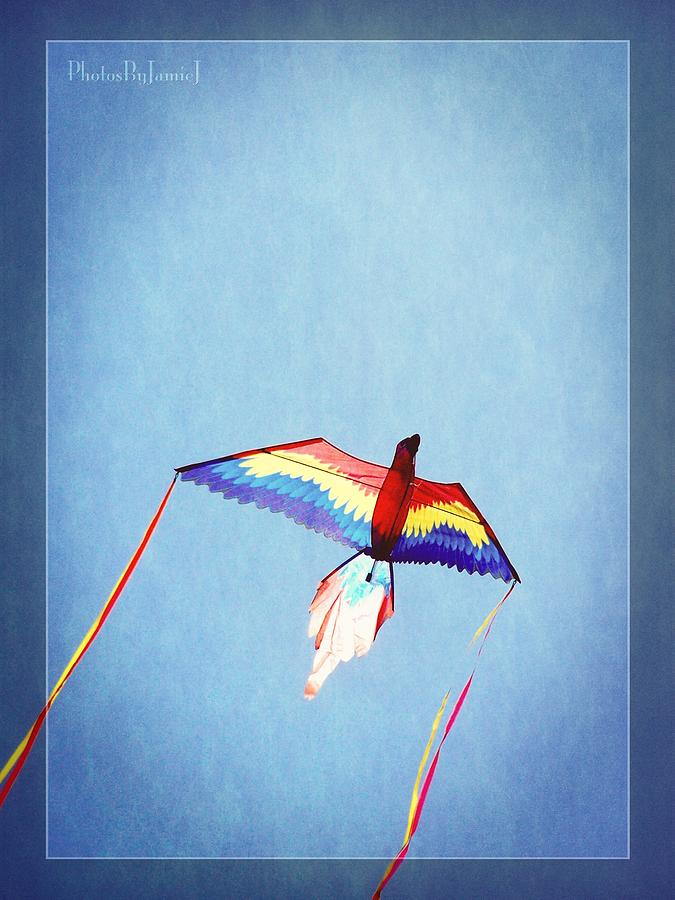 Kite Photograph - Fly Free by Jamie Johnson