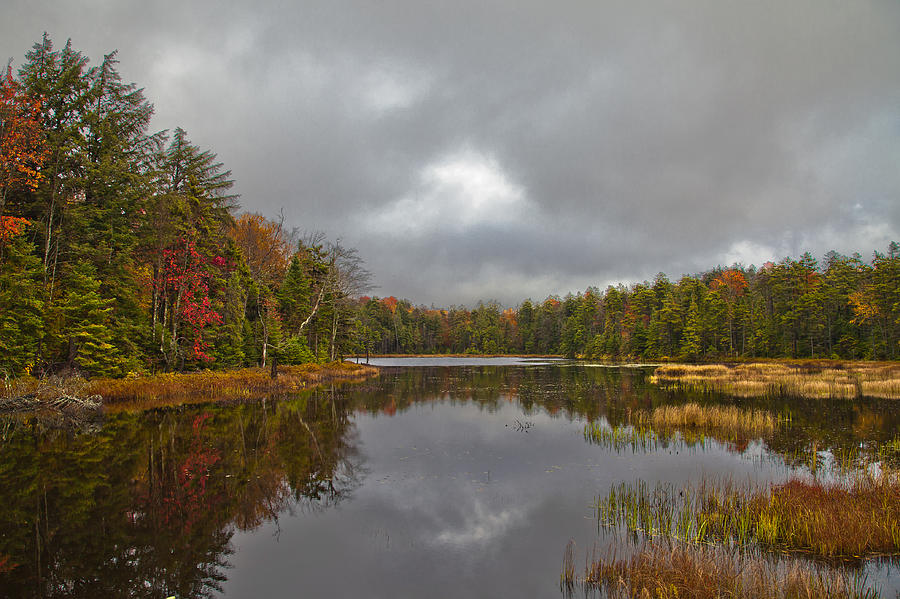 Fly pond near old forge new york photograph by david patterson for Pond companies near me