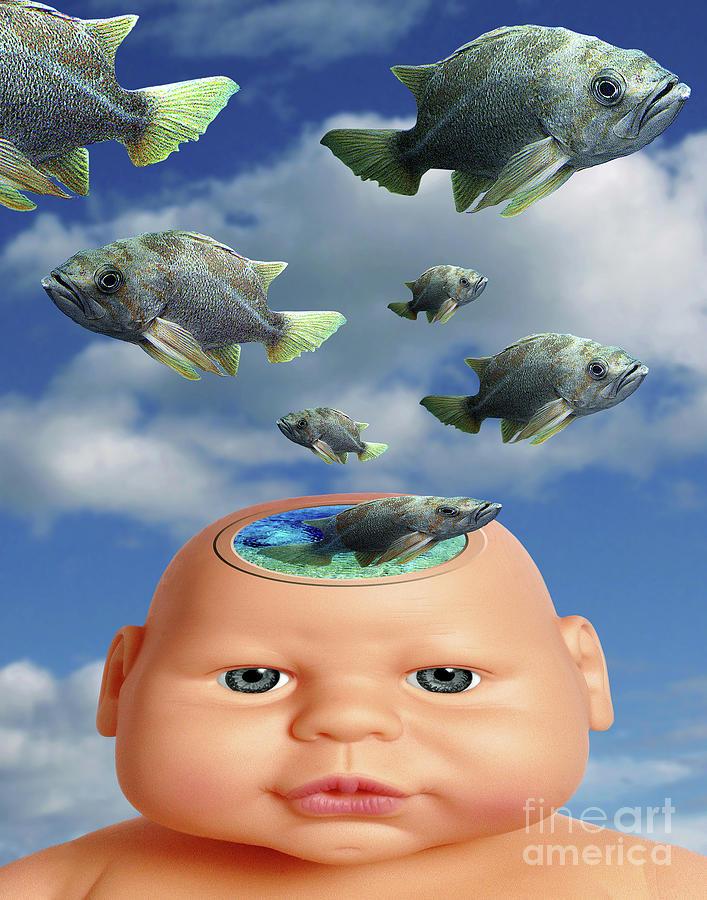 Flying head fish digital art by keith dillon for Fish head app