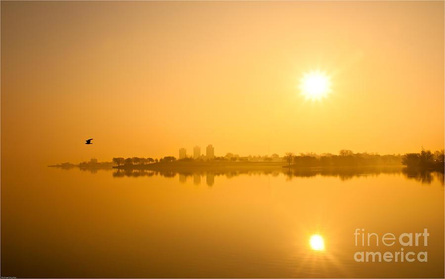 Sunrise Photograph - Flying In The Golden Light by Michael Hrysko