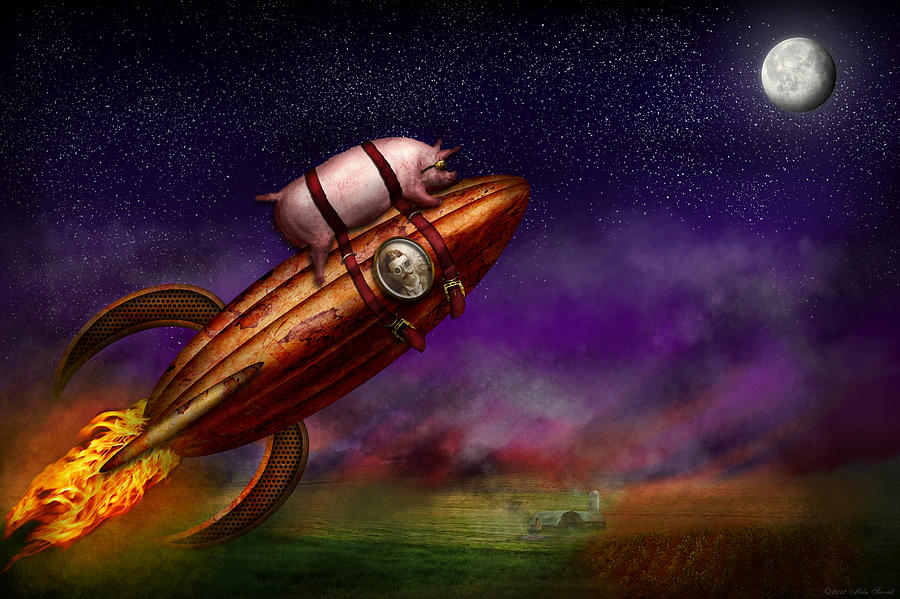 Pig Photograph - Flying Pig - Rocket - To The Moon Or Bust by Mike Savad