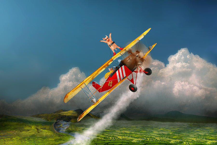 Flying Pig Photograph - Flying Pigs - Plane - Hog Wild by Mike Savad