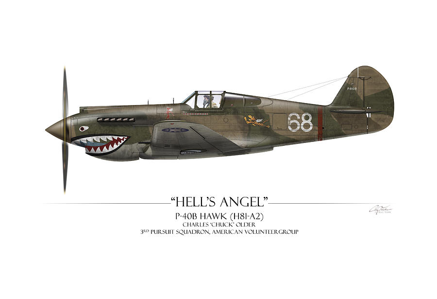 Aviation Painting - Flying Tiger P-40 Warhawk - White Background by Craig Tinder