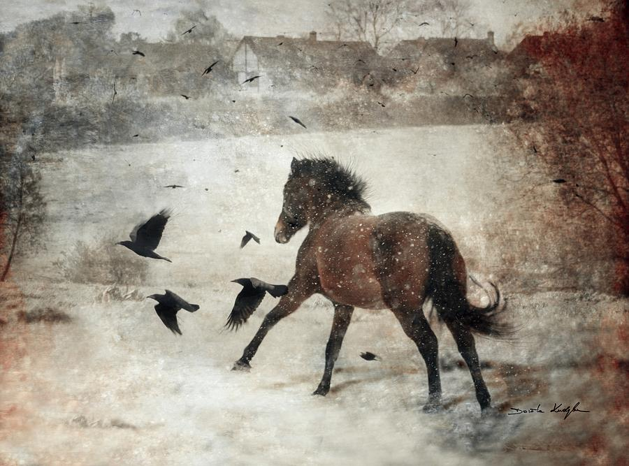 Horse Photograph - Flying With The Crows by Dorota Kudyba