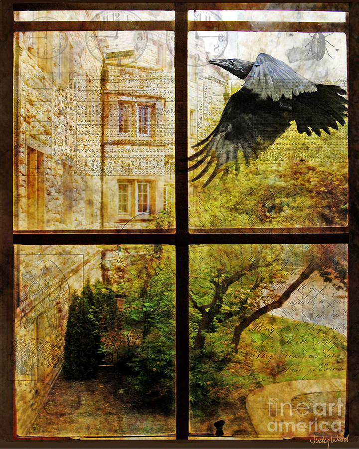 Through the Window by Judy Wood