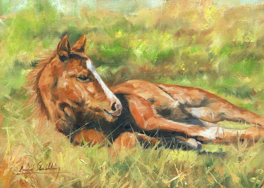 Foal Painting - Foal by David Stribbling