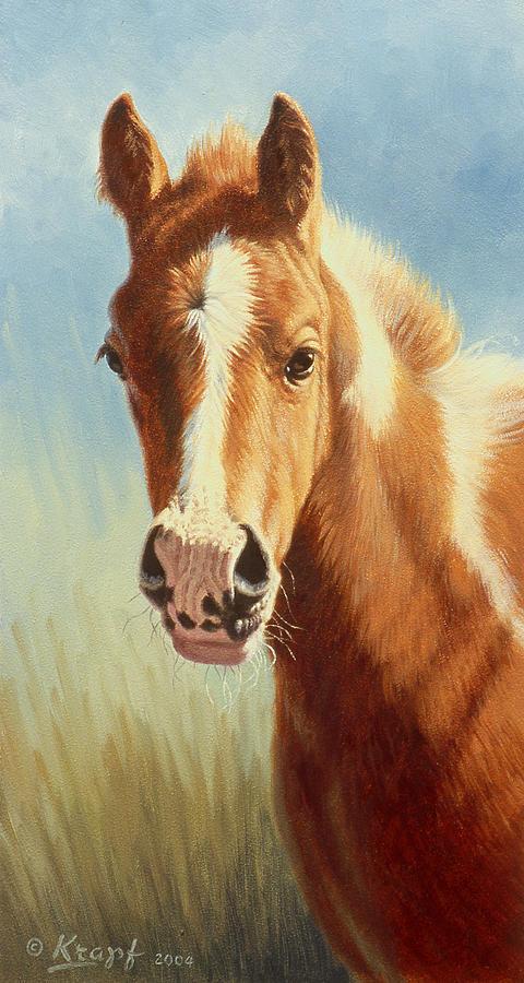 Foal Painting - Foal Portrait by Paul Krapf
