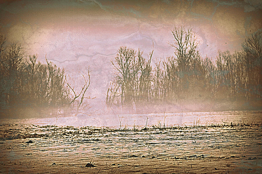 Landscape Photograph - Fog Abstract 2 by Marty Koch