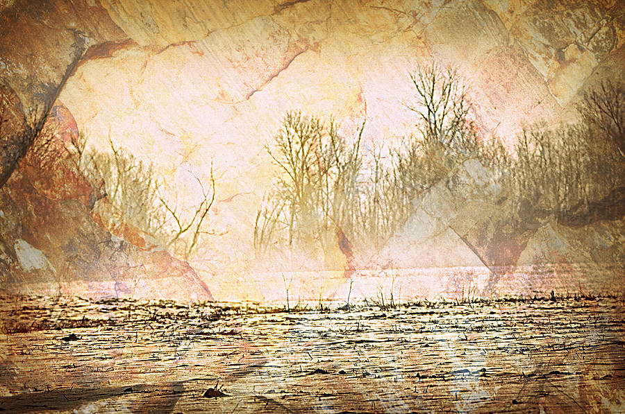 Landscape Photograph - Fog Abstract 4 by Marty Koch