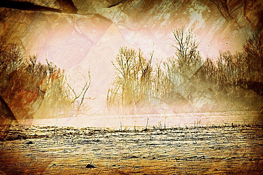 Landscape Photograph - Fog Abstract 5 by Marty Koch