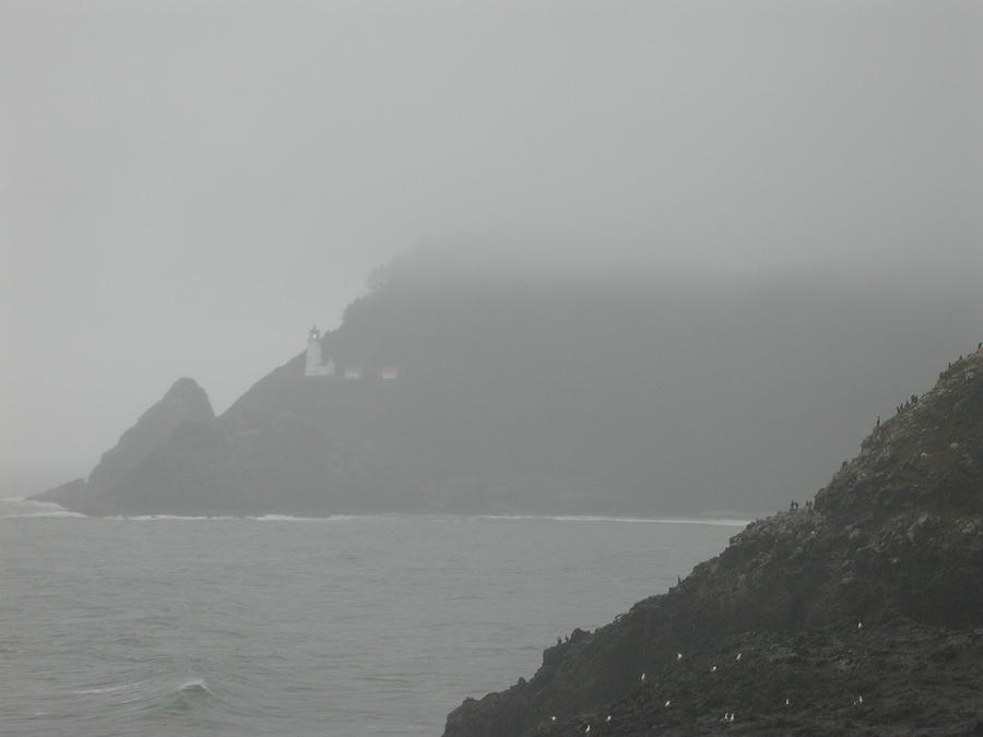 Landscape Photograph - Fog At The Coast by Yvette Pichette