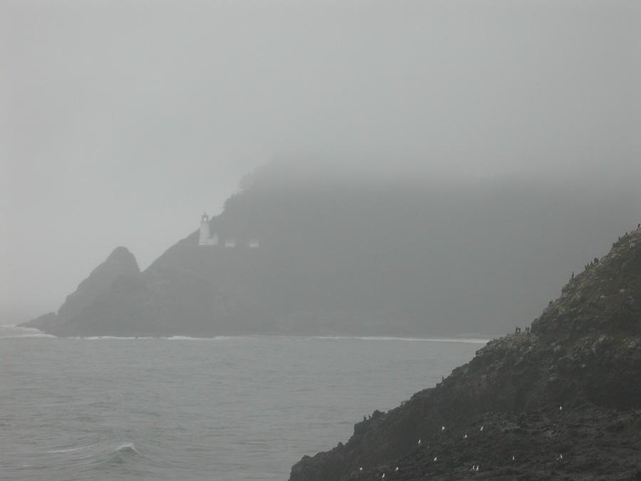 Landscape Photograph - Fog At The Coast by Yvette Pichette