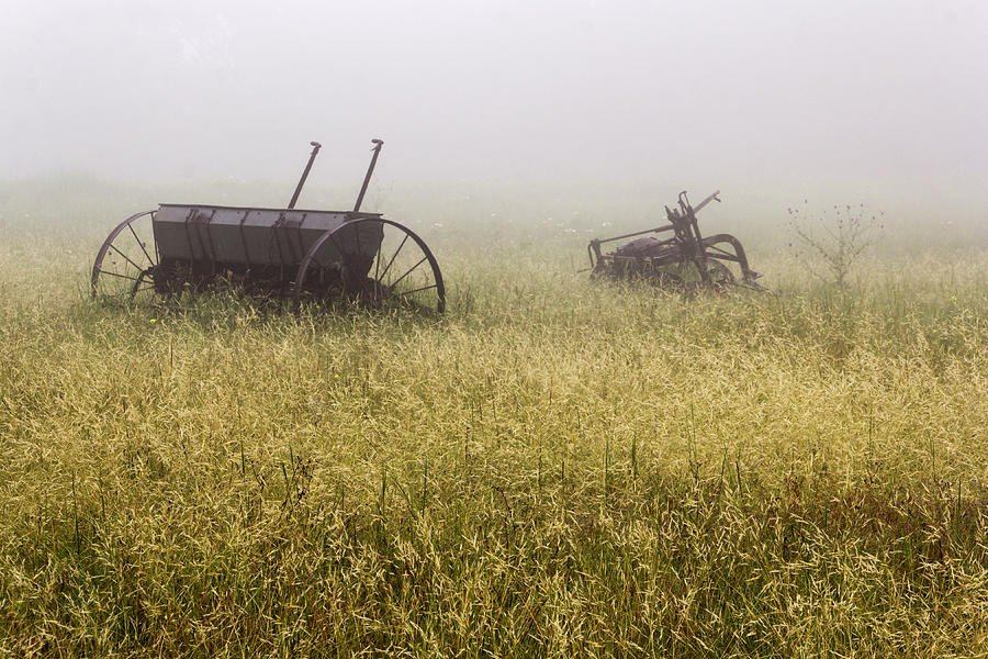 Landscapes Photograph - Fog Covered Field by Dana Moyer