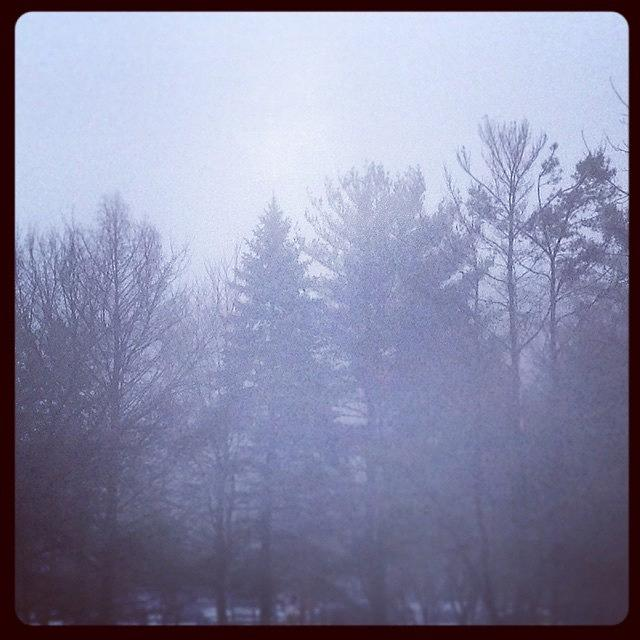 Winter Photograph - Fog by Frank J Casella