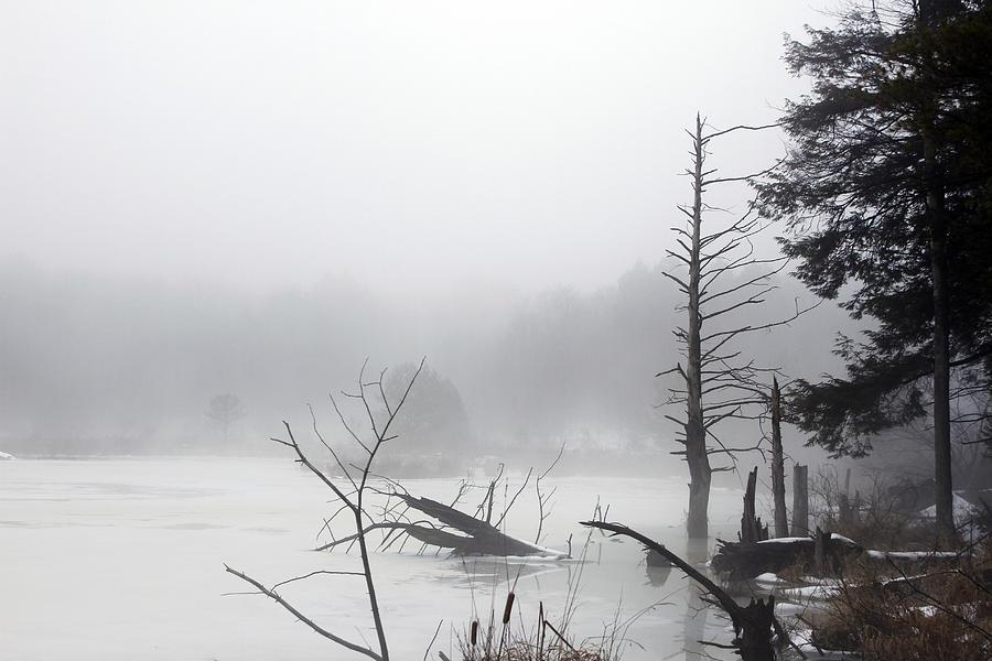 Ponds Photograph - Fog On The Beaver Pond by David Simons