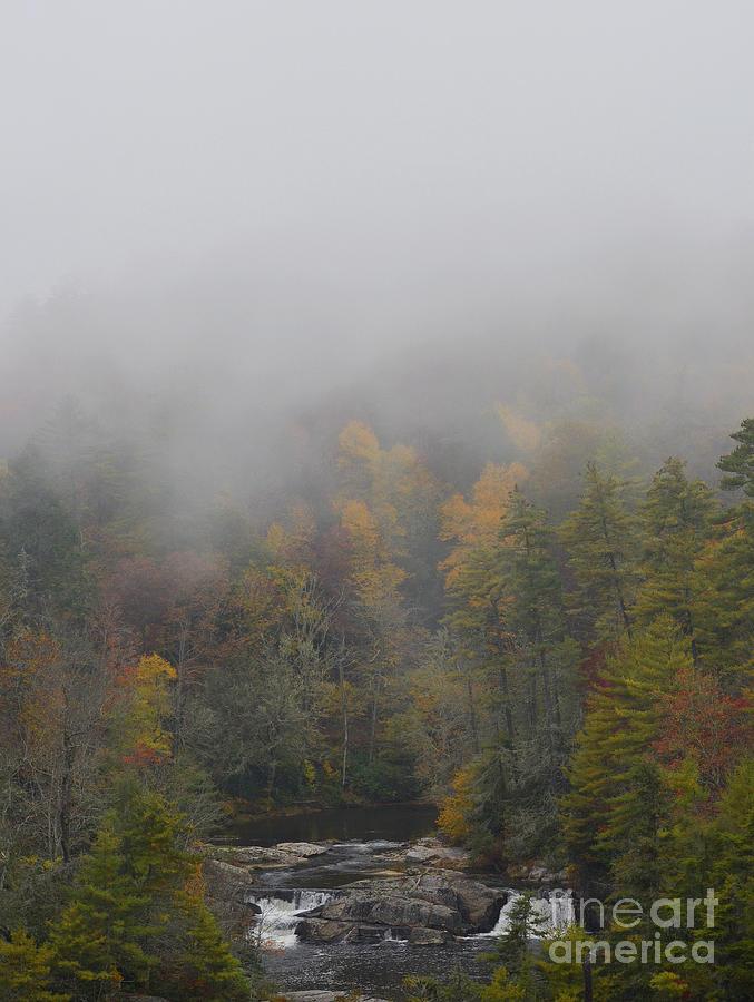 Fog Photograph - Fog on the Mountain by Debra Johnson