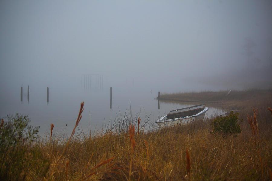 Fog On The Shore Photograph