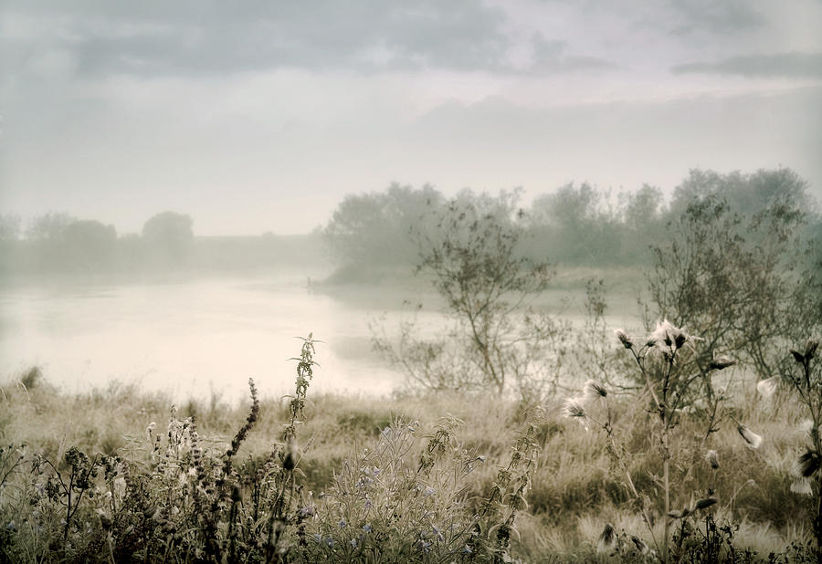 Scotland Photograph - Fog Over The River. Stirling. Scotland by Jenny Rainbow