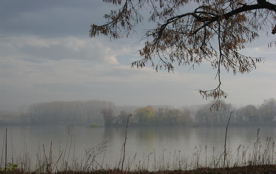 River Photograph - fog by Sonya Ragyovska