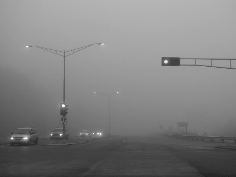 Morning Photograph - Fogged Commute by Wild Thing