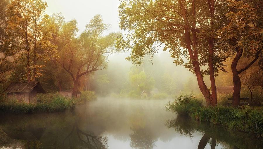 Pond Photograph - Foggy Autumn by Leicher Oliver