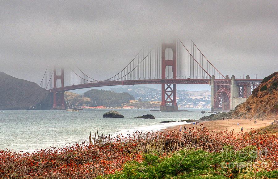 Kate Brown Photograph - Foggy Bridge by Kate Brown