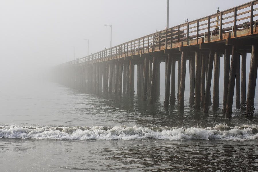 Sea Photograph - Foggy Dock by Jim Young