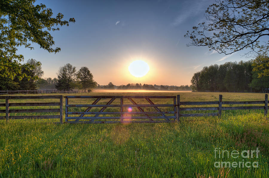 Landscape Photograph - Foggy Field by Michael Ver Sprill