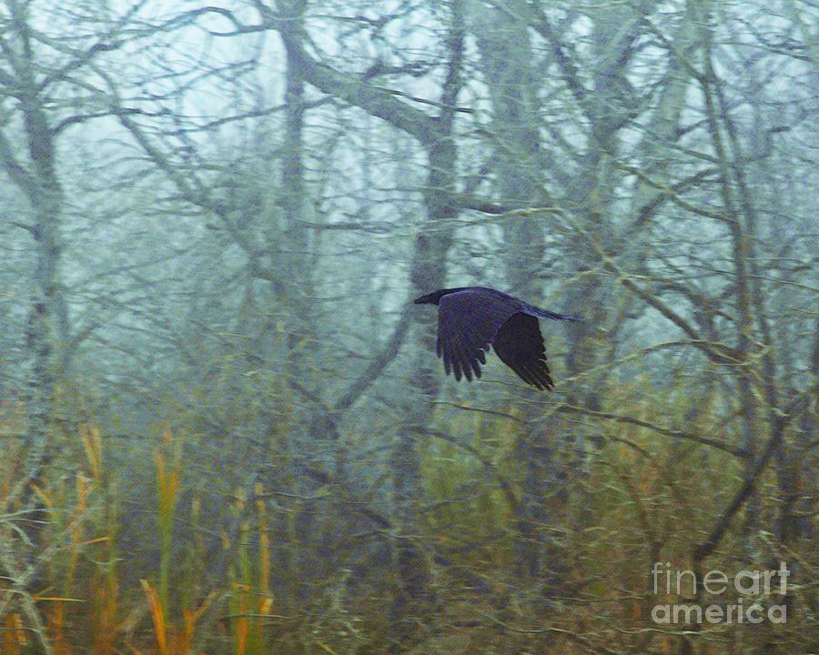 Raven Digital Art - Foggy Flight by Judy Wood