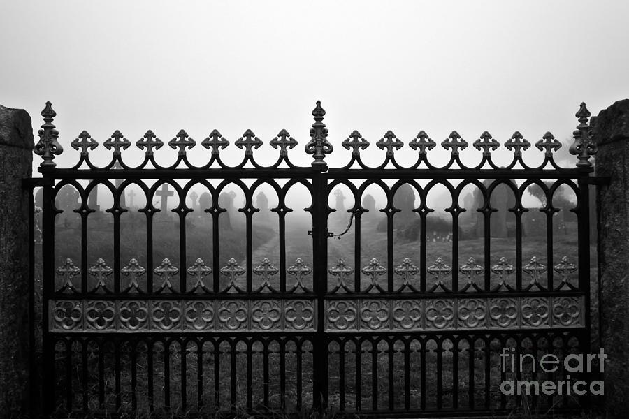Gates Photograph - Foggy Grave Yard Gates by Terri Waters