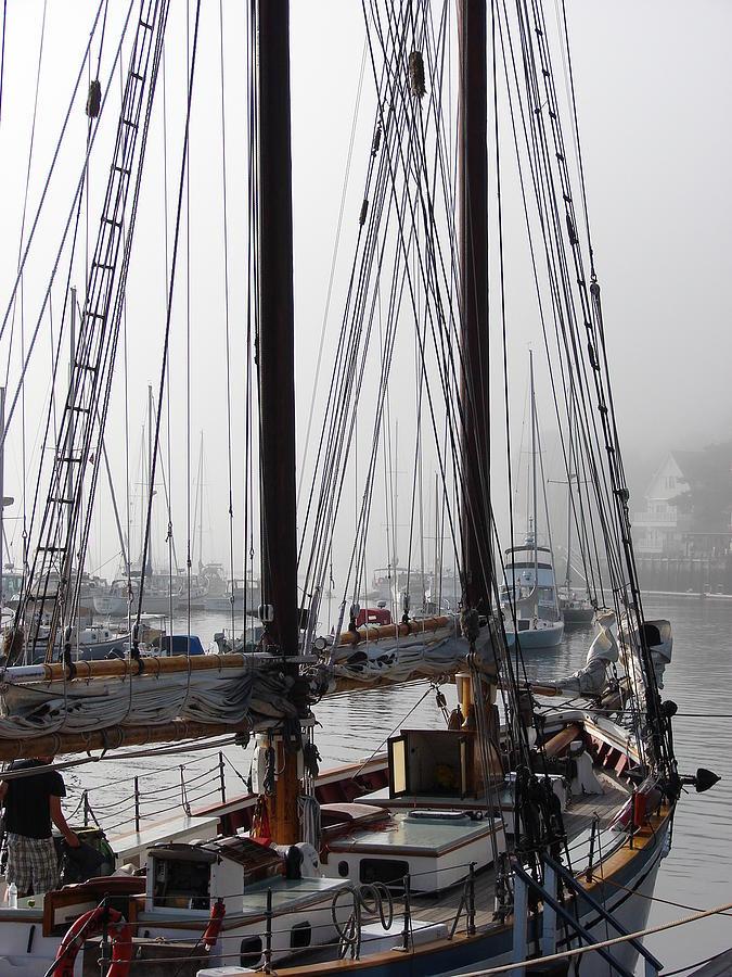 Foggy Harbour Photograph