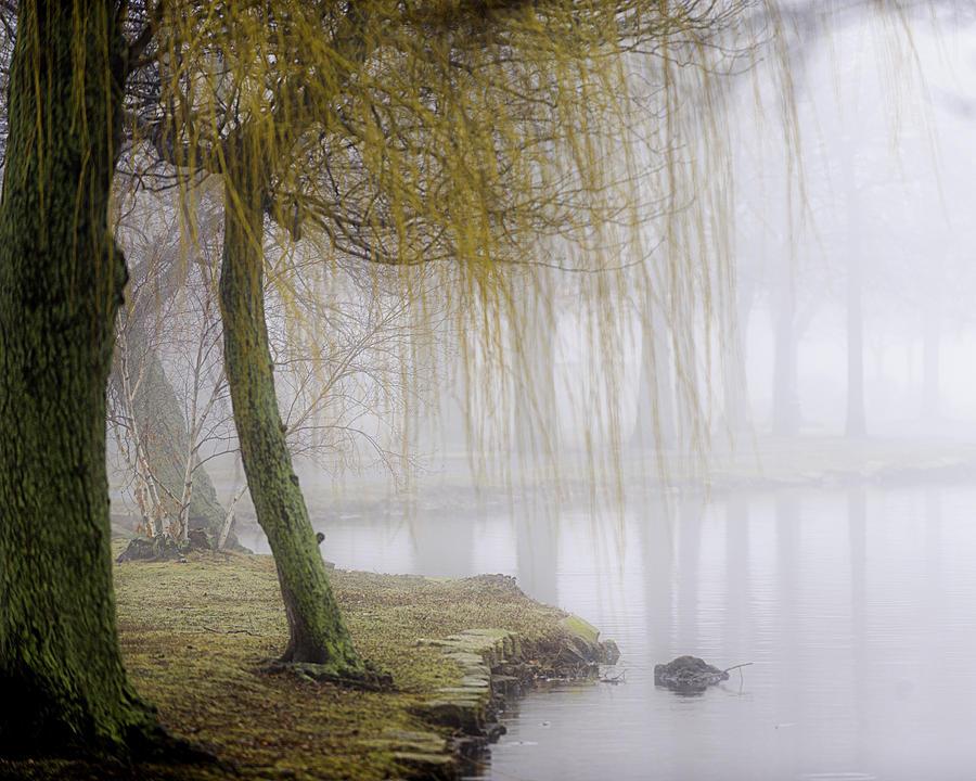 Fog Photograph - Foggy Lake Morning by Vicki Jauron
