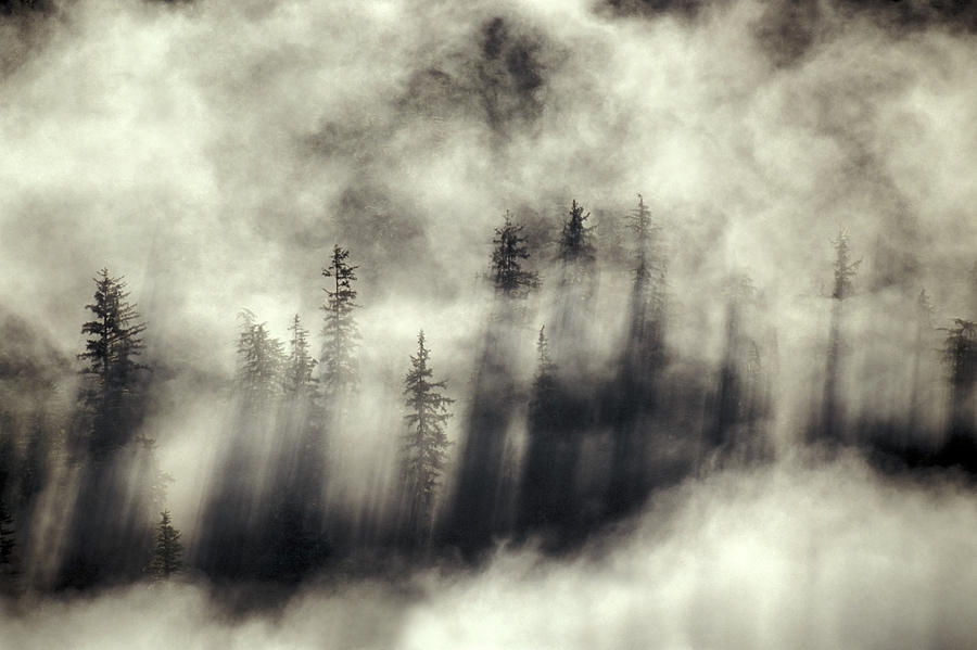 Moody Photograph - Foggy Landscape Stephens Passage by Ron Sanford