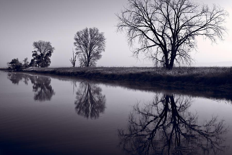 Fog Photograph - Foggy Morn Bw by Steve Gadomski