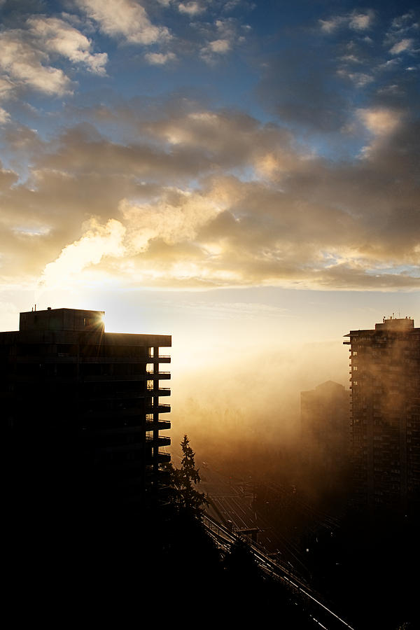 Lisa Knechtel Photograph - Foggy Morn by Lisa Knechtel