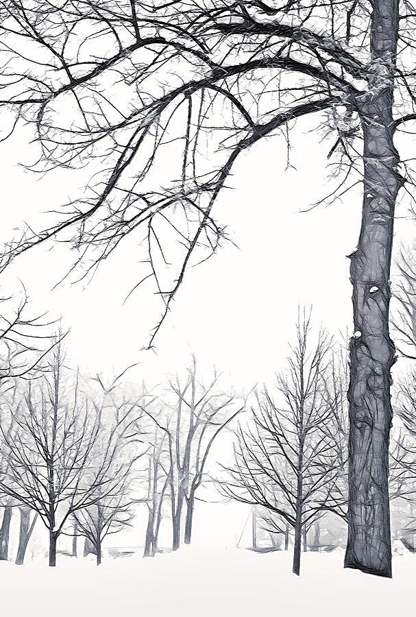 Fog Photograph - Foggy Morning Landscape - Fractalius 6 by Steve Ohlsen