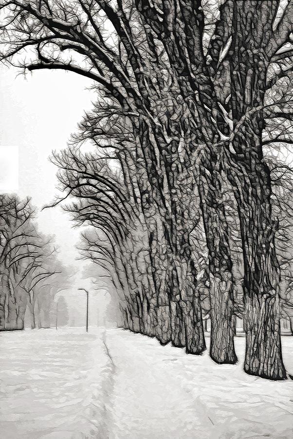 Fog Photograph - Foggy Morning Landscape - Fractalius 7 by Steve Ohlsen