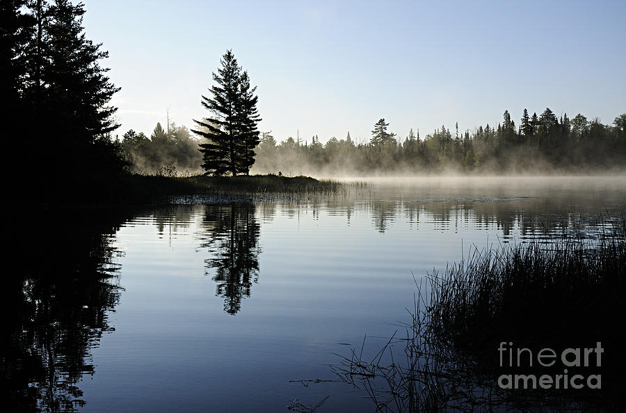 Nature Photograph - Foggy Morning by Larry Ricker
