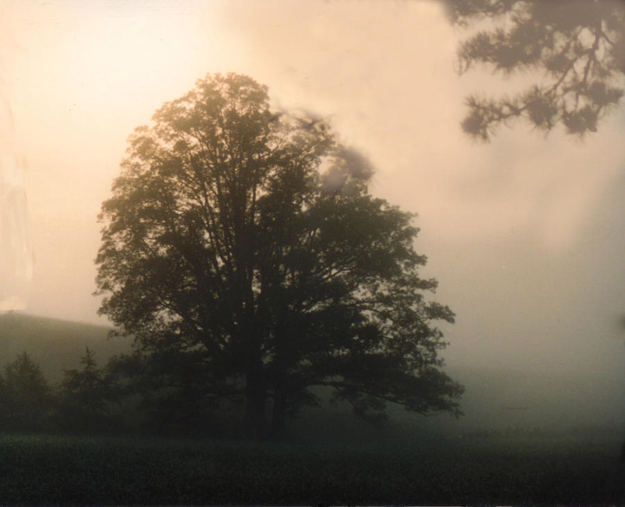 Sunrise Photograph - Foggy Morning by Norman Johnson