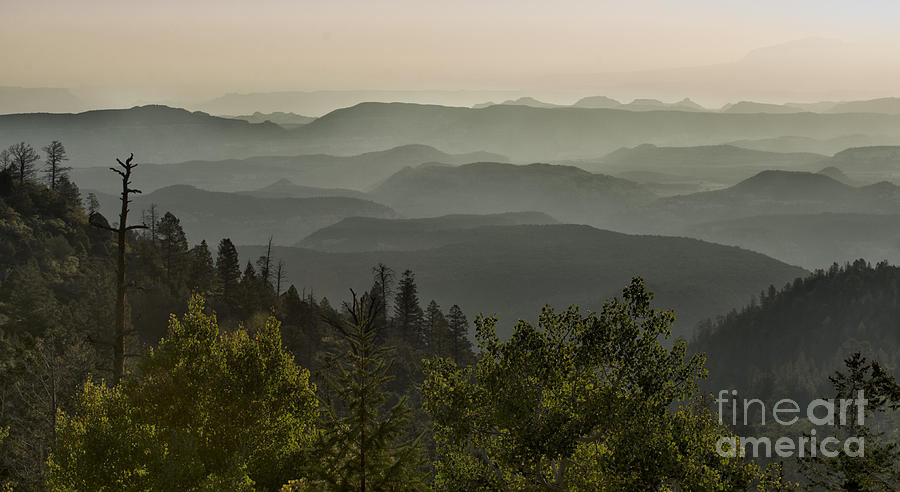 Southwest Photograph - Foggy Morning Over Waterpocket Fold by Sandra Bronstein