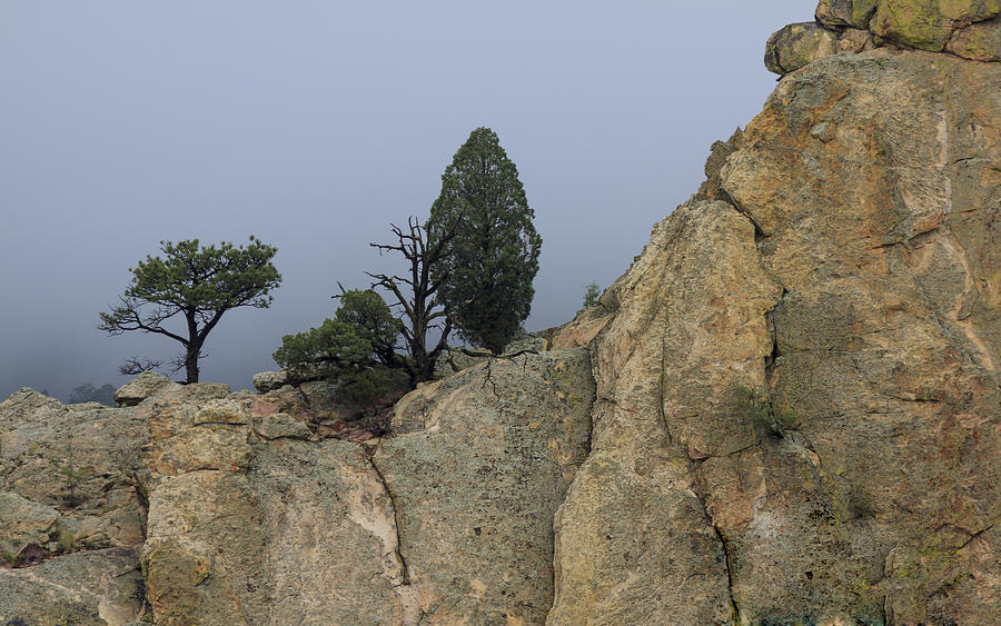 American West Photograph - Foggy Morning by Richard Smith