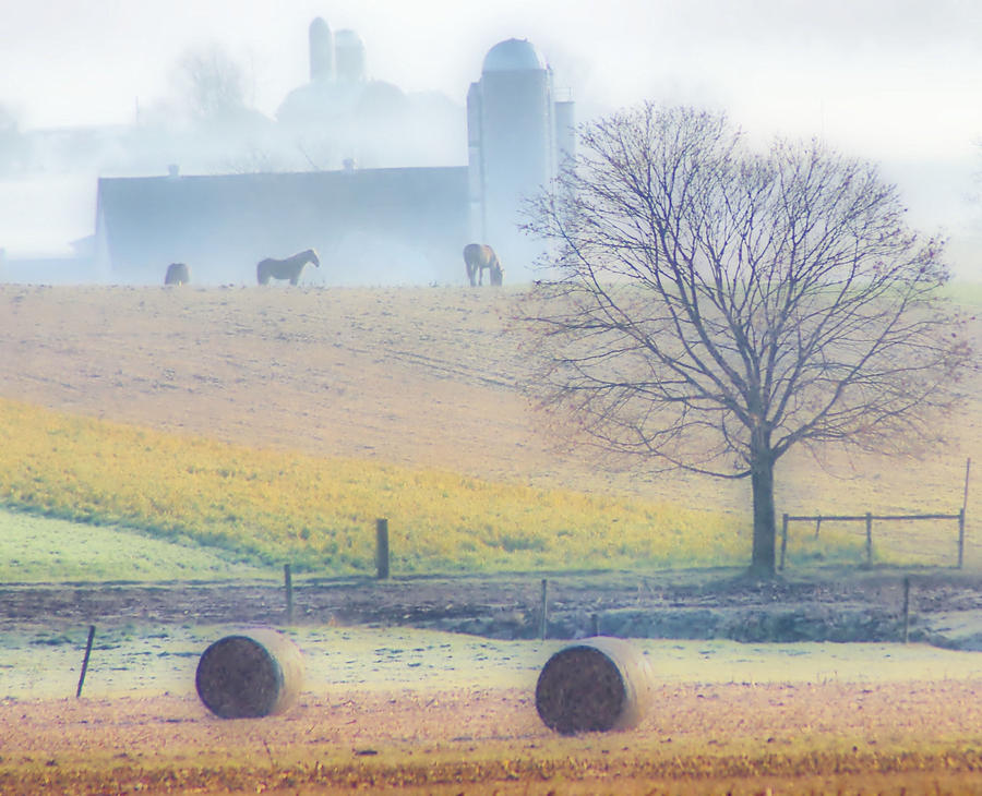Countryside Photograph - Foggy Morning by Thomas  MacPherson Jr