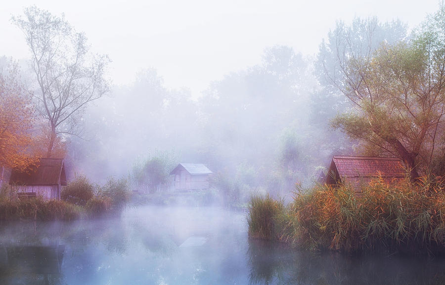 Lake Photograph - Foggy Mornings On The Lake by Leicher Oliver