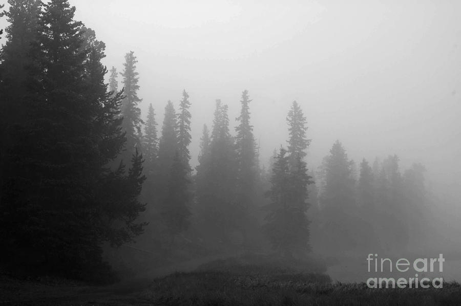 Black And White Photograph - Foggy Mt Evans by Barbara Schultheis